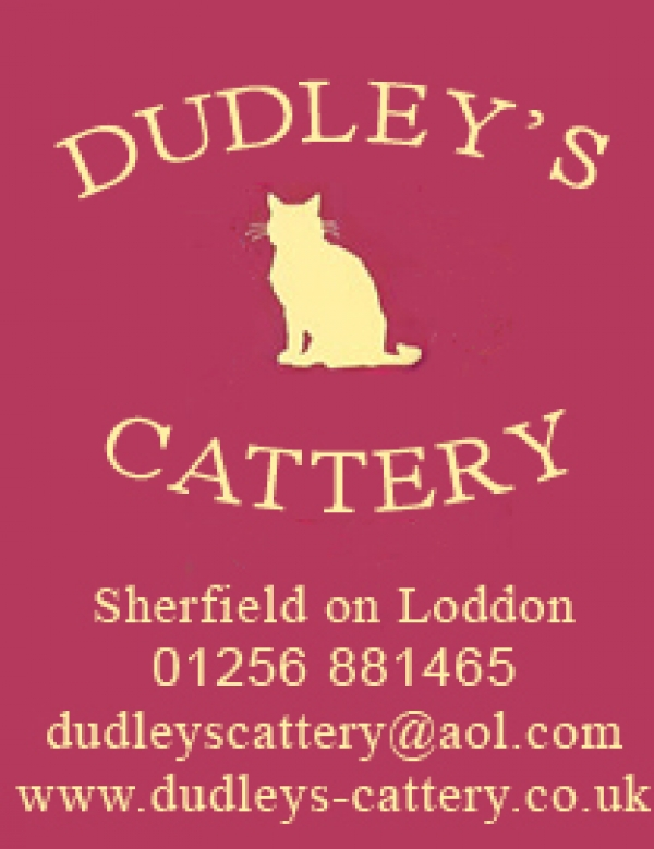 Dudley's Cattery